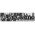 BigCasino Closed Review on LCB