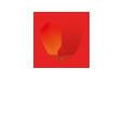 Vikibet logo