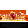 Free spirttl logo