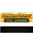 Golden choose3