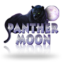86 panther moon copy