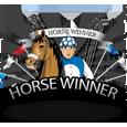 Horse winner