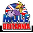 Mule britannia