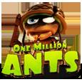 One million ants