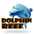 Dolphin reef 2