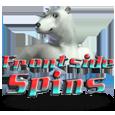 Frontside spins