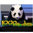 100pandas
