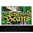 Enchanted beans