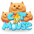 Cat n mouse