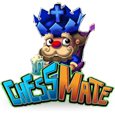 Chess mate
