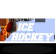 Virtual ice hockey