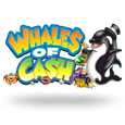 Whales of cash icon