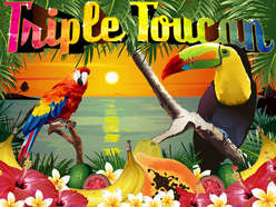 Game Review Triple Toucan