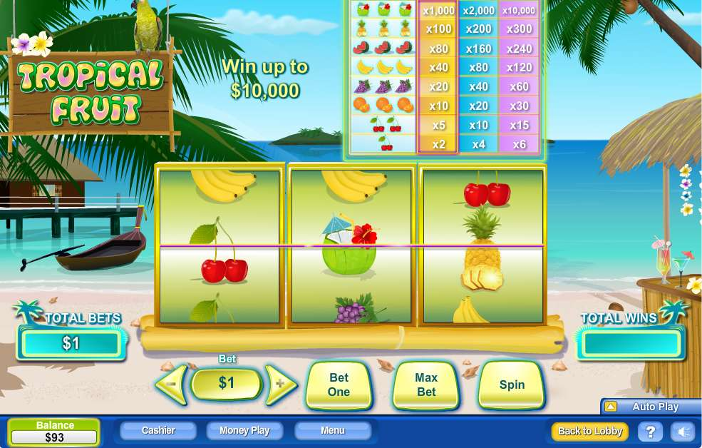 Game Review Tropical Fruit
