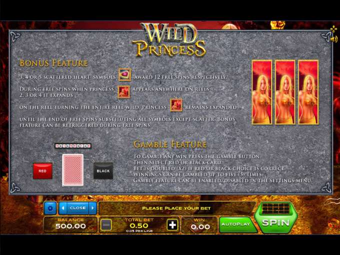 Game Review Wild Princess