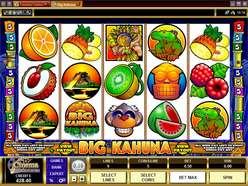 Game Review Big Kahuna