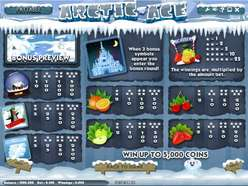 Game Review Arctic Ace