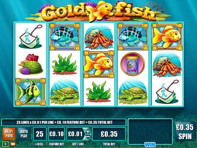 beste online casino forum golden casino games