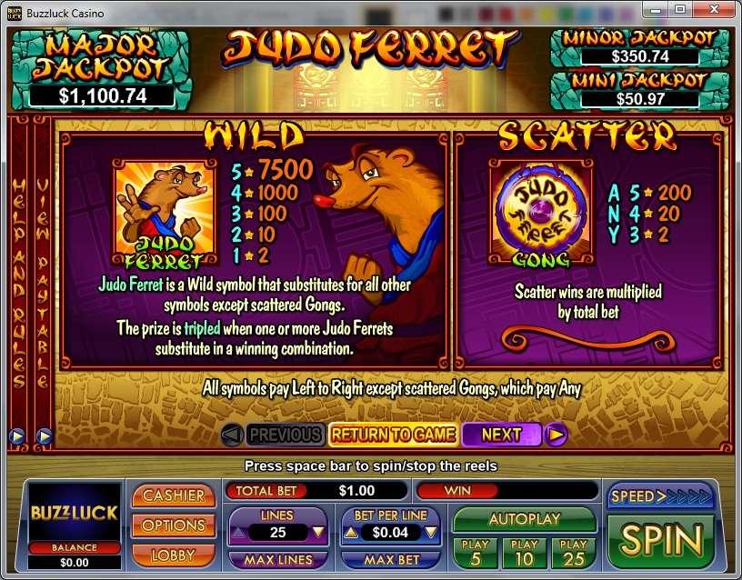 Game Review Judo Ferret