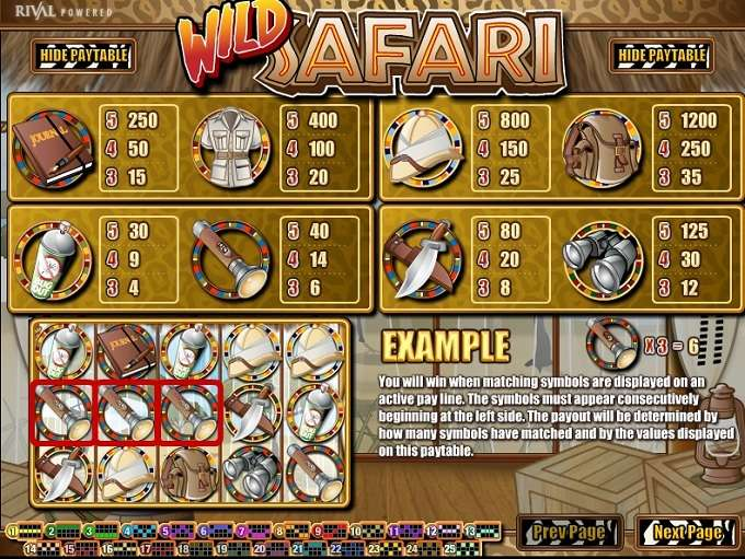 Game Review Wild Safari