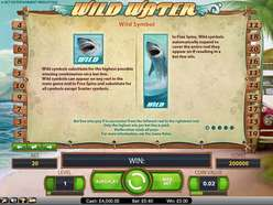 Game Review Wild Water