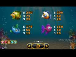 Game Review Golden Fish Tank