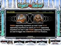 Game Review Tiger vs Bear