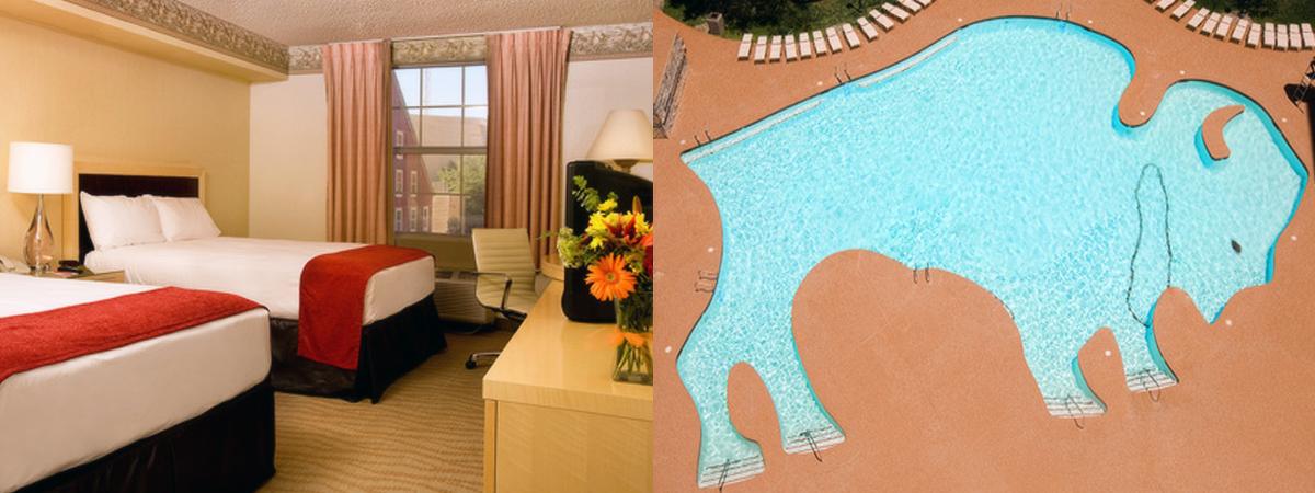 2673 lcb 491k op cxc 2 hotelroom buffalopool