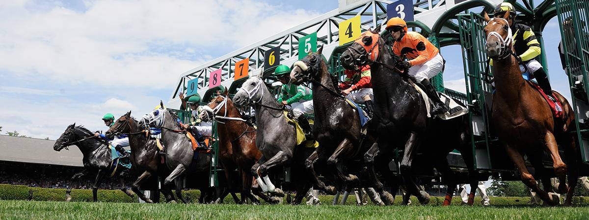 Saratoga race course 1
