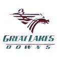 Great lakes downs logo