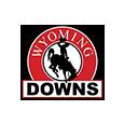 Wyoming downs logo