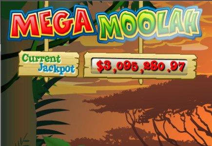Progressive Mega Moolah Website Officially Opened