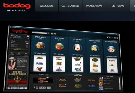 Bodog Europe Gets New Marketing Chief