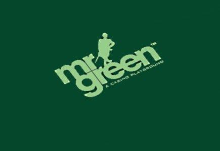 Mr. Green Appoints New CFO