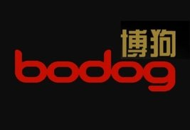 New COO for Bodog Asia