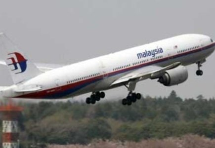 Bogus Websites Created to Cash in on Malaysian Airlines Tragedy