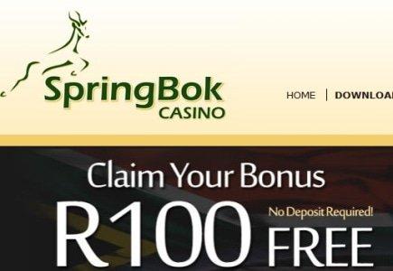 Claim Human Rights Day-Inspired Casino Bonus at Springbok Casino