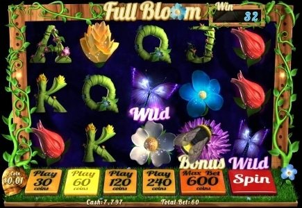 Winaday Releases Full Bloom