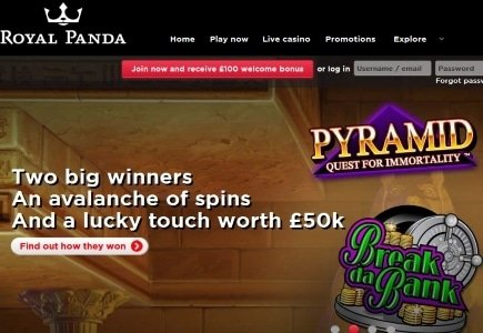 $77k Awarded to Two Royal Panda Players Just in Time for the Holidays