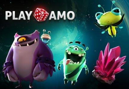 New Forum Rep for PlayAmo Casino