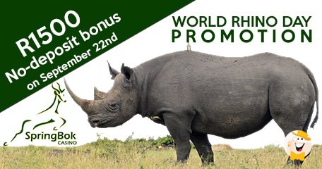 Springbok Casino Hosts World Rhino Day No-deposit Bonus