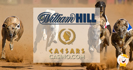 William hill and caesars to launch iowa race book