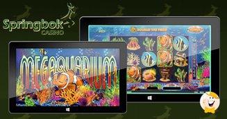 Springbok Plans February Launch of Megaquarium