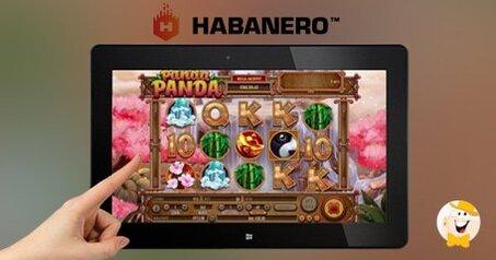 Habanero launches panda panda slot