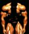 gilajikput91 avatar